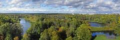 Gatchina, Russia (janepesle) Tags: gatchina saintpetersburg russia landscape nature autumn fall tree sky forest park lake water гатчина санктпетербург природа пейзаж