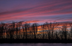 Tonights Sunset.... (Kevin Povenz Thanks for all the views and comments) Tags: 2018 december kevinpovenz westmichigan thebendarea jenison ottawa ottawacounty ottawacountyparks sunset evening dusk trees clouds pink blue red orange yellow canon7dmarkii frozen sky eveningsky