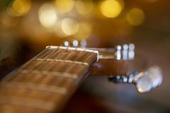 music (bnbalance) Tags: music guitar instrument musical aspirational create invent compose strings bokeh macro fun art