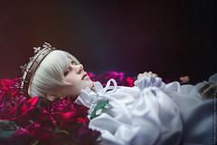 Sleeping Beauty (*TatianaB*) Tags: bjd abjd bjddoll balljointeddoll migidoll cynicalyujin