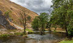 The trees of Dovedale (Through_Urizen) Tags: category derbyshire dovedale england landscape places canon1585mm canon canon70d uk unitedkingdom greatbritain landscapephotography travelphotography sky clouds greyclouds river stream dale valley hills slopes grass trees countryside rural outdoor