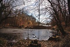 Peto jezero (roksoslav) Tags: zagreb croatia 2019 maksimir nikon z6 nikkorz2470mmf4s lake jezero