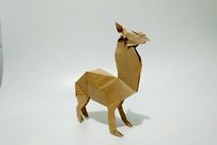 草泥马 (guangxu233) Tags: paper art paperart paperfolding fold origami origamiart handmade animal alpaca 折纸 折り紙 折り紙作品