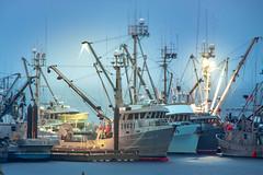 Port Hardy Night Fishboats (salas0869) Tags: ocean bc fish fishing boat boats sunset night