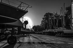 Sailing boats resting (Wal Wsg) Tags: sailingboatsresting sailing sailingboats boats boat sail veleros velero naves navios barcos argentina provinciadebuenosaires sanisidro atardecer atardece ocaso sunset phwalwsg photography photo foto fotografia fotocallejera byn bw blackandwhite blancoynegro canonesorebelt6i canont6i canon sombras shadow shadows