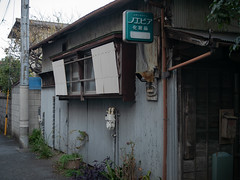 ノエビアの家 (kasa51) Tags: house building sign corrugated galbanized ironsheet totsuka yokohama japan トタン波板
