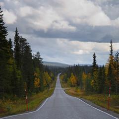 Lapland_Day2_Muonio_20180911_IMGS4767_s (Andrew-Holloway) Tags: lapland muonio autumn torassieppi