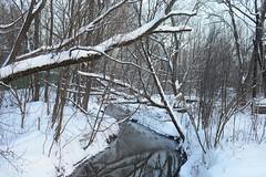 Winter river (akk_rus) Tags: 3570 28 nikkor nikkor357028 nikon d800 nikond800 russia россия moscowregion подмосковье europe европа solncevo solntsevo солнцево
