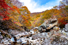 Piagol Valley in Jirisan National Park during autumn (patuffel) Tags: piagol valley south korea autumn foliage 2018 leica m10 summicron 28mm rocks tree forest maple leaf leafes river waterfall water sky blue