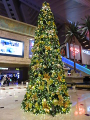 IMG_6428 (grooverman) Tags: las vegas trip vacation december 2018 casino hotel canon powershot sx530 luxor