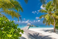 the View (icemanphotos) Tags: view horizon sea jetty palm paradise island calmness
