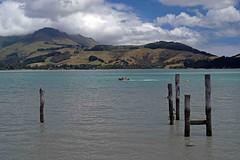 DSCF2408 (Maureen Pierre) Tags: lytteltonharbour bankspeninsula newzealand mtherbert old ferry wharf lowtide xt2 fujifilm