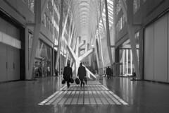 Toronto 2018_002 (c a r a p i e s) Tags: carapies cityscapes 2018 canada ontario toronto allenlambertgalleria nikondf architecture arquitectura bw blackwhite blancoynegro fotografiaurbana urban urbanphotography urbanidad urbvanidad urbvanity urbanphoto streetphoto streetphotography streetlife