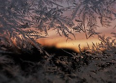 Friday Frosticles..x (Lisa@Lethen) Tags: window ice morning sunrise cold pretty car glass frost dawn