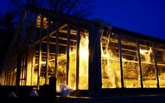 Darkness and light (joanne clifford) Tags: winter ottawa arboretum centralexperimentalfarm glass greenhouse bluehour windowwednesday hww