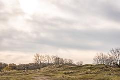 AR2018_1109_AWD_6064 (Adri Rovers) Tags: awd noordholland vogelenzang