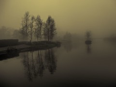 Foggy (Bill Eiffert) Tags: olympussh2 water reflection mood atmospheric pictorial trees nature tinted man mist park
