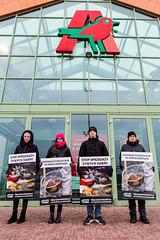 Auchan Poznań1.d (Otwarte Klatki) Tags: aktywizm karpie streetwork