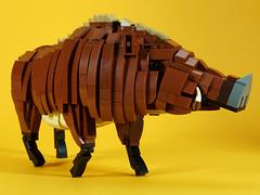 wild_boar_05 (kaba_and_son) Tags: 干支 レゴ lego boar 猪 いのしし イノシシ