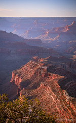 Late Afternoon Blues (Dan at ProPeak - Thanks for 1.5M views!) Tags: america arizona berrybutte blue blueskies buddhatemple canyon famousplace geologicformation grandcanyon grandviewpoint green internationallandmark landscape nps nationalpark northamerica orange panorama pink purple red shivatemple southrim spring sunset texture touristattraction traveldestination travelandtourism usa zoroastertemple