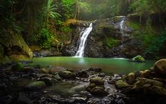 Tucano (Diego S. Mondini) Tags: waterfall cachoeira presidentegetúlio santacatarina brasil brazil green water
