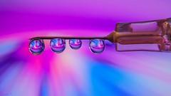 Seringue - 6152 (ΨᗩSᗰIᘉᗴ HᗴᘉS +27 000 000 thx) Tags: tg5 drop droplet color blue pink macro colorful vivid hensyasmine namur belgium europa aaa namuroise look photo friends be wow yasminehens interest intersting eu fr greatphotographers lanamuroise