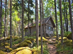 Hermit's hut on Koreakoivu island (also known as Harhu), lake Päijänne. (L.Lahtinen (nature photography)) Tags: päijänne island erakonmaja