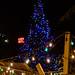 Downtown christmas tree lot