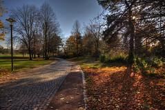 07-Britzer Garten_181116_N- 05 (sigkan) Tags: deutschland berlin britzergarten hdr nikond700 nikon2485mmf284
