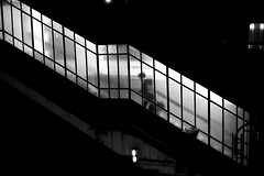 In the lit stairs (pascalcolin1) Tags: paris13 homme man nuit night éclairé lit escalier stairs lumière light photoderue streetview urbanarte noiretblanc blackandwhite photopascalcolin 50mm canon50mm canon