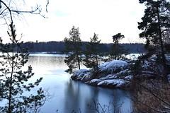 < Magelungen udde > (Mister.Marken) Tags: winter madeinsweden nikond5600