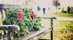 Remembrance (LAKAN346) Tags: solemnquietpeacefulwreathholidayremember2018december wreathredgreen rain bokeh