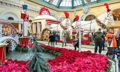For the Young at Heart (Ron Drew) Tags: nikon d850 christmas holiday bellagio lasvegas nevada conservatory flowers carriage horses ponsettia tree people water fountain display indoor atrium horticulture garden