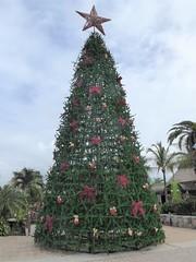 Cozumel, Mexico, Day 10 -- Caribbean Cruise Vacation, Tourist Market at the Port, Christmas Tree (Mary Warren 12.9+ Million Views) Tags: cozumelmexico caribbean cruise hollandamerica green christmas market christmastree