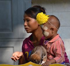 MYANMAR - AMARAPURA (1011) - Monastère Mahagandayon (eso2) Tags: amarapura asia myanmar birmania
