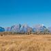 Teton Range panorama