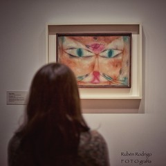 What's on the cat's mind? (Mister Blur) Tags: cat bird catandbird paul klee moma museum modern art new york city nyc bokeh happy furry friday shallow depthoffield dof snapseed nikon d7100 35mm f18 rubén rodrigo fotografía