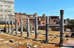 DSC_0053 (Antolink.ES) Tags: roma ancient historia imperio unesco italia cultura arquitectura árbol antigüedad ruinas