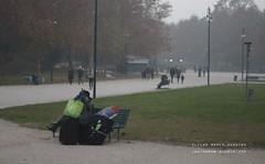Nebbia (Marco_Guarino) Tags: milano milan park shy fog nebbia city canon 77d eos 50mm persone erba parco