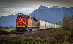 Westbound CN (Paul Rioux) Tags: train railroad railway cn locomotive engine transportation chilliwack bc mountains sky clouds prioux outdoors