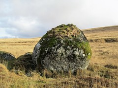 Giant's Marble to South Hessary Tor SX 582717 (Bridgemarker Tim) Tags: dartmoor scenes moorland tors outcrops