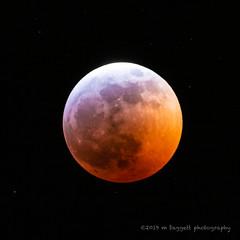 2019 Blood Moon (99baggett) Tags: bloodmoon sky astrophotography moon jmb1950 mbaggettphotography astrometrydotnet:id=nova3161537 astrometrydotnet:status=solved