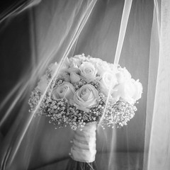 Thank you to @lesleymeredithphotography for this gorgeous photo of one of our beautiful bridal bouquets 😍 . . #parsleyandsageflorist #gypsophila #babysbreath #babysbreathflowers #babysbreathbouquet #weddingposy #weddingstyle #weddingflorist #we (parsleyandsage11) Tags: bridalinspiration babysbreath flowerstagram floraldesign weddingposy bridalbouquet weddingbells breathtaking weddingtrends weddingstyle weddingflorist weddingbouquet flowersofinstagram weddingideas flowerbeauties gypsophila babysbreathflowers parsleyandsageflorist weddinginspo babysbreathbouquet
