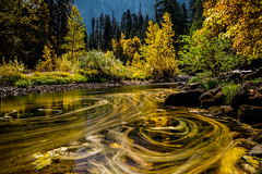 Streams of Fall Color (Jeff Sullivan (www.JeffSullivanPhotography.com)) Tags: yosemite national park fall colors photography workshop yosemitenationalpark yosemitevalley yosemitevillage mariposacounty california usa nature landscape travel night photographer canon eos 5d mark iv photo copyright 2018 jeff sullivan october starstax composite long exposure