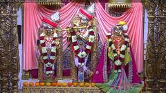 Radha Krishna Dev Shringar Darshan on Wed 21 Nov 2018 (bhujmandir) Tags: radha krishna dev lord maharaj swaminarayan hari bhagvan bhagwan bhuj mandir temple daily darshan swami narayan shringar