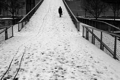 On the snowy footbridge (pascalcolin1) Tags: paris13 femme woman neige enneigé snow snowy passerelle footbridge photoderue streetview urbanarte noiretblanc blackandwhite photopascalcolin 50mm canon50mm canon