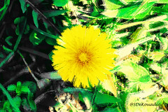 Dandelion (Stephenie DeKouadio) Tags: art artistic abstract abstractart abstractflower abstractflowers abstractpainting darkandlight macroabstract colorful dandelion painting shadow shadows