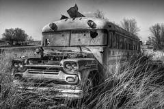 (mokastet) Tags: mokastet route66 abandoned abandonedbus bus texas thelonestarstate blackandwhite blackwhite noiretblanc