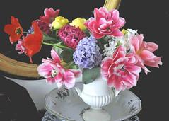 Fiori allo specchio (Melisenda2010) Tags: flora fiori naturamorta stilllife tulipani giacinti