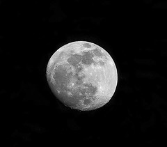 Nearly Full Jan.18_05 (brucekester@sbcglobal.net) Tags: moon superbloodwolfmooneclipse lasvegas